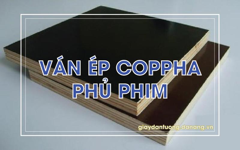 van-ep-phu-phim-hoi-an (4)